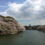 Photo of Chidorigafuchi