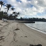 Beautiful trip/eloping to Pines & Palms Resort in Islamorada, FL