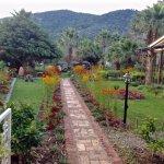 Photo of Dalyan Resort