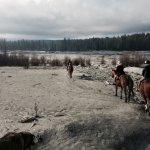 Canada 2017 Horseback Ride Bear Corner Rockies Al Bjorn