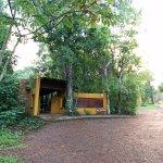 Cabanas Luces de la Selva Foto