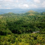 Hills with a view. Chocolate Hills, Bohol