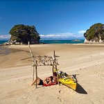 Relax in the beautiful Abel Tasman