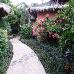 Lovely landscaping around the resort