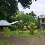 Tangkoko Lodge Photo