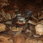 Remains in Bol's Cave