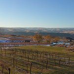 Winter view of Cave B Vineyards