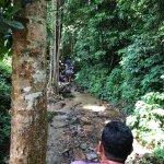 Khao Lak Land Discovery - Day Tours照片