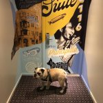 My bulldog in from of Suite 2116 - Dede Fortin's old apartment