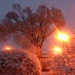 Ozark Snow