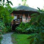 Living Colours Diving Resort Bungalow