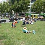 Lawns for picnics