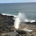 Photo of Spouting Horn