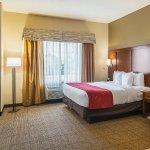 Photo de Comfort Suites Grayslake