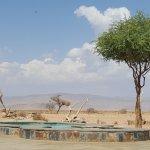 Photo of Desert Camp