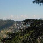 Shimla Holiday