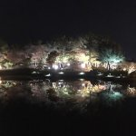Photo of Anapji Pond