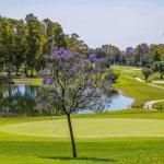 SolMarbella Estepona-Golf