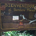 Photo of Sendero Macuco