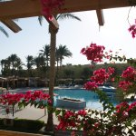 Foto di Palm Beach Resort