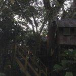 Photo de Parrot Nest Lodge
