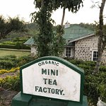 Foto de Tea Factory Hotel Restaurant