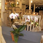 Jacques provides a peaceful and romantic setting on the water's edge