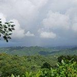 Foto de El Yunque Rain Forest