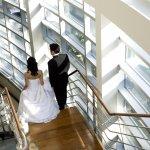 Marriage / Wedding