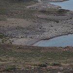 Photo de Tierra Patagonia Hotel & Spa