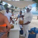 Coco Locos in a real coconut on the beach on Tuesdays