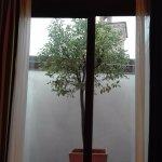 Hotel Ferrara Foto