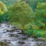 watersmeet river