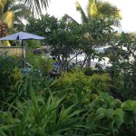 Savaii Lagoon Resort Foto