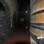 Part of the cellar tour at Calem
