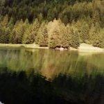 Uno specchio d'acqua stupendo il lago dei caprioli