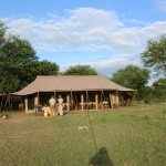 Photo de Olakira Camp, Asilia Africa