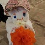received_1505704976161390_large.jpg