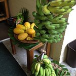 Part of breakfast, fresh fruits & bananas