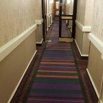 科瑞斯海德公園酒店照片