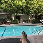 Zdjęcie Avalon Hotel and Bungalows Palm Springs