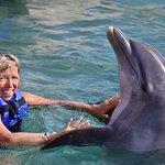 Photo of Dolphin Discovery Costa Maya