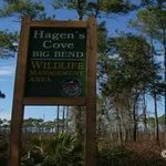 hagens_cove_sign_1_300x228_fwc_large.jpg