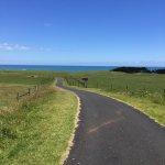 Photo de New Plymouth Coastal Walkway