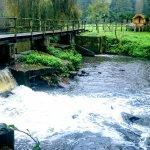 صورة فوتوغرافية لـ Le Moulin de Bray