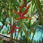 Photo de Sofitel Bali Nusa Dua Beach Resort