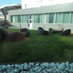 Photo of H2C Hotel Milanofiori