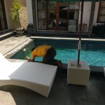 Pool cleaned
