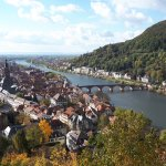view of the old town and Neckar river