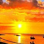 Photo of Mutt - Mauritius Travel Tours